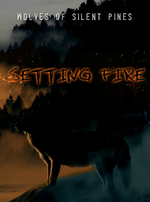 Setting Fire 03: The Girl in the Steelers Cap